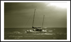 sepiaframed (agphoto100) Tags: sepia mono boat sail sailing aground mast rigging white sea water waves sky clouds photoshop olympus sz16 sandgate brisbane queensland australia photoscape oilpaintingeffect agphoto100