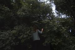 (▲·stardust) Tags: diana girl chica back espalda portrait retrato hand mano brazo arm woods forest bosque trees arboles nature wild naturaleza salvaje