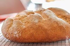 Fresh-Baked Homemade Artisanal Bread (radpix.ninja) Tags: bread loaf artisanal wheat whole homemade cooling baked fresh sourdough natural wholesome