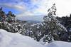 Wintertime (Marcus Rahm) Tags: landscape landschaft winter snow schnee baum bäume trees travel hiking bastei basteigebiet felsenbühnerathen rathen lilienstein wehlgrund berge elbsandsteingebirge elbtal felsen felswand sachsen saxony sächsischeschweiz saxonswitzerland