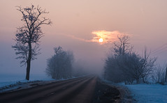 New Dawn (gabi_halla) Tags: dawn morning sunrise early fog foggy landscape sky trees mysterious sun cloud outdoor light sinshine canon road alone lonely