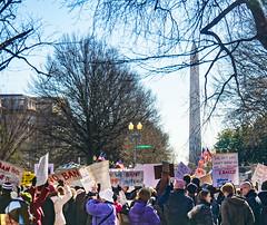 2017.02.04 No Muslim Ban 2, Washington, DC USA 00397