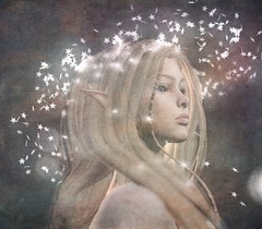 My Stars (gwen.enchanted) Tags: maitreya catwa lumae mesange swallow go due persefona halfdeer