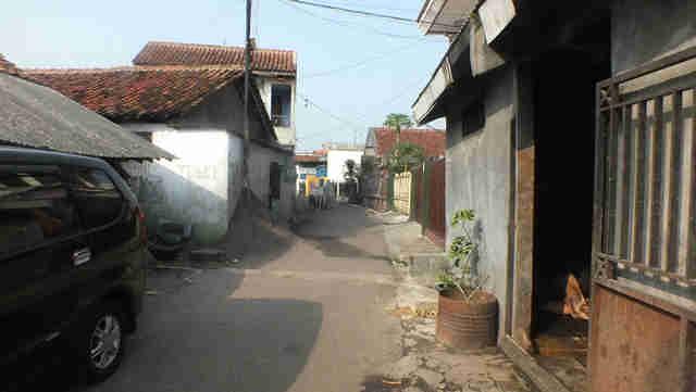Peternakan sapi perah di Bogor