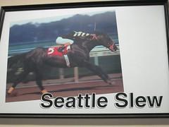 IMG_1794 (jacorbett70) Tags: ny newyork belmont racing tc horserace triplecrown belmontpark elmont belmontstakes americanpharaoh americanpharoah
