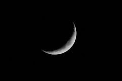 新月 new moon (Yi-Liang Lai) Tags: sky bw moon canon astronomy newmoon lunar 黑白 天空 天文 月亮 新月 canon6d 裁切 胖白