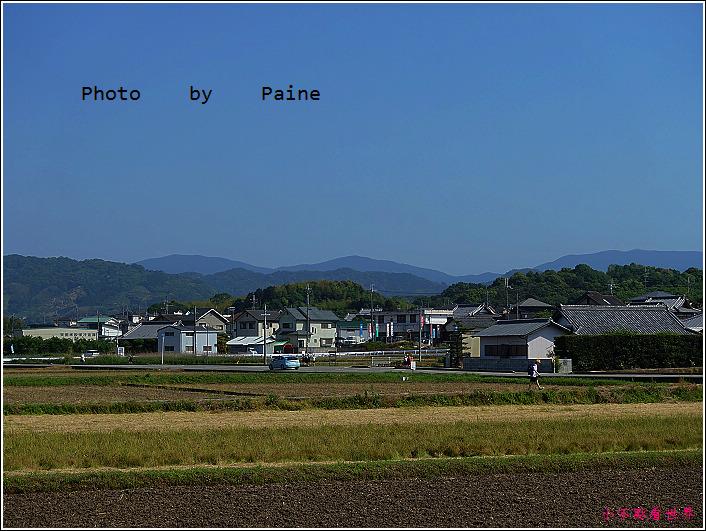 和歌山大池遊園-平池綠地公園 (33).JPG