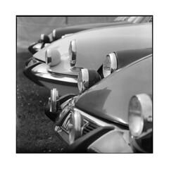 goddesses • vignoles, burgundy • 2015 (lem's) Tags: classic car automobile burgundy citroen ds hasselblad bourgogne 500cm vignoles