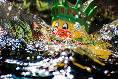 Keepin your head above water (Tony Shertila) Tags: england water moving droplets europe action britain drop ducky statueofliberty splash sinking drowning wirral independanceday bromborough unindated