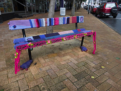 Cosy seat/seat cosy (Fraser P) Tags: street newzealand cute art wool public bench weird knitting funny seat craft wellington knitted quaint coloured quirky decorated guerrillaknitting
