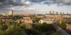 Wapping treetops (Joe Dunckley) Tags: uk england london skyline cityscape docklands wapping eastend eastlondon