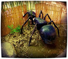 Not married to your uncle, but then again...CFG (milomingo) Tags: park sculpture newmexico southwest art insect ant perspective albuquerque bamboo fantasy frame abq theme recreation themed representation attraction oversize abqbiopark childrensfantasygarden