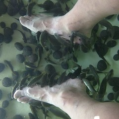 I am having a bunch of fishes eat my dead skin!
