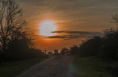 Romantic Sunset (Ian M Bentley) Tags: stanwicklakes stanwick northampton england uk path bridge couple romantic olympus omd em5ii zuikopro1240mm evening sunset handinhand