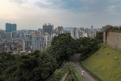 The wave (Markus Lehr) Tags: vegetation photographerinthewild urbanspace cityscape manmadelandscape china markuslehr