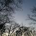 Clear Sky 3