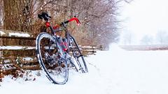 Cross bike in VF snow (Garen M.) Tags: harsh bicycle ride cabins aloominator fujifilmx20 vandessel cyclocross bike weather valleyforge snow