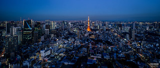 Tokyo Panorama from Mori Tower