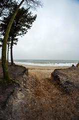 graal-müritz winterwonderland (jakobstitz) Tags: nikon d5100 winter wald forest germany coast ostsee baltic sea wonderland landscape strand beach