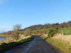 Road to Redcastle, Lettoch, Black Isle, Dec 2016 (allanmaciver) Tags: lettoch black isle north kessock route rod redcastle country fields rain passed sun shine wet quiet allanmaciver