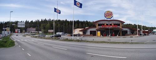 Skogar 2008 (2)