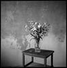 Weiße Lilien (Konrad Winkler) Tags: lilien blumenstraus tisch stillleben rolleiortho25 6x6 mittelformat hasselblad503cx epsonv800