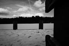 DSC04090.jpg (The Active Shooter) Tags: daytime turtlepond bnw dock