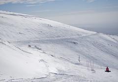 DSC_4976 (Dan_lazar) Tags: יום ski hermona mountain nature north israel snow שלג חרמון הר צפון גולן ישראל לבן אנשים