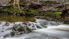 2017-01-17 Rivelin-7390.jpg (Elf Call) Tags: nikon endcliffepark river yorkshire water stream 18105 sheffield steppingstones waterfall d7200 blurred