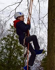 Boy in blue jacket climbs tree 2 (Montgomery Parks, MNCPPC) Tags: treeclimbing woodsidepark january2017 2017