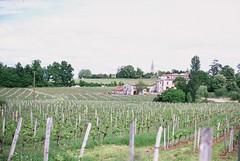 Saint-Émilion (Abilio) Tags: countryside wein saintemilion weinyard