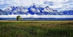 Timeless Tetons (Jeff Clow) Tags: usa mountains nature landscape timeless mountainrange grandtetonnationalpark jacksonholewyoming jeffclowphototours