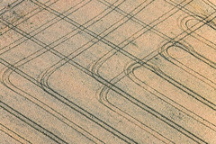Farmers - Painting - 50 (Aerial Photography) Tags: field lines by landscape cornfield landwirtschaft tracks feld spuren traces aerial agriculture landschaft karlshof deu luftbild luftaufnahme linien bayernbavaria deutschlandgermany mfr getreidefeld ackerbau wug ellingen fotoklausleidorfwwwleidorfde 12072011 vgellingen ellingenlkrweisenburggunze ellingenlkrweisenburggunzenhausen 1ds69314