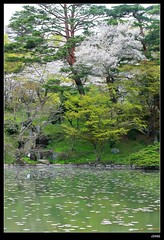 nEO_IMG_DP1U3773 (c0466art) Tags: park old trip travel flowers light green castle pool beautiful japan canon season spring scenery afternoon bloom sakura 2015 trres 1dx c0466art