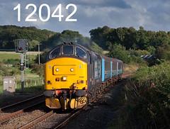 robfrance5d2_12042_290815__x37402_waterslack_silverdale_2c31_nt_drs_edr16lr3pse7weblowres (RF_1) Tags: 12csvt 2015 37 37402 brel britain class37 cumbria cumbrian cumbriancoast diesel dieselelectric directrailservices drs ee england englishelectric franchise haulage hauling lancashire localtrain loco locomotive locomotivehauled locomotives mark2 mk2 nucleardecommissioningauthority passengertrain publictransport rail rails railway railways rural silverdale stoppingtrain train trains transport travel travelling uk unitedkingdom waterslack westmorland
