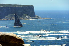"Start of the ""Sydney to Hobart yacht race 2016"" -  ""Perpetual loyal"" becoming first out ""The Heads"" of Sydney Harbour to open sea (nicephotog) Tags: perpetual loyal 2016 sydney hobart yacht race heads gap sea ocean boat sail flotilla spinnaker mouth start harbour"