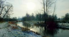 Brabants Landschap op en koude wintermorgen/Brabants Landscape on a cold winter morning (truus1949) Tags: wandelen winter heeze natuur landschap kleine dommel reflectie