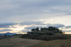 on top of the hill (phacelias) Tags: cielo lucht sky hill heuvel collina italy italia