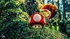 Lost in Heimenschwand (Ukelens) Tags: ukelens photoshop swiss switzerland schweiz suisse svizzera mario supermario heimenschwand photography manipulation forest wald moos moss mushroom shrooms fantasy fantasie