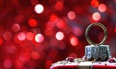 Deck the Halls and not your Relatives HMM (flowrwolf) Tags: macromonday macromondays holidaybokeh hmm happymacromonday red glitter shiny bokeh christmasornament macro makro decoration indoor inside festiveseason festive flowrwolf