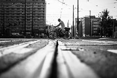man on bike (ewitsoe) Tags: monochrome blackandwhite ewitsoe nikond80 35mm street center man bike bicycle ride rider tram lines summer city poznan poland