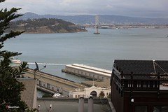 Coit Tower, 1 Telegraph Hill Blvd, San Francisco, CA 94133, USA (101) (alexanohan) Tags: coittower