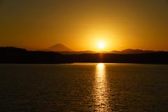 2016-12-31 狭山湖 1
