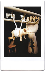 Hog tied by circumstances (art y fotos) Tags: hands artistsmodel ladders chairs pigs alligators toys homebound honolulu oahu hawaii lomography dianainstantback diana instant back debonair fppdebonair toycameras plasticfilmtastic120 filmtasticplasticinstax filmphotographypodcast filmphotographyproject fpp homemade handmade pinhole bambole bamboo bamboopinholecamera lebambolemkx pinstanair fujifilm instax mini instantfilm integral film
