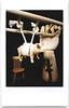 Hog tied by circumstances (art y fotos) Tags: hands artistsmodel ladders chairs pigs aligators toys homebound honolulu oahu hawaii lomography dianainstantback diana instant back debonair fppdebonair toycameras plasticfilmtastic120 filmtasticplasticinstax filmphotographypodcast filmphotographyproject fpp homemade handmade pinhole bambole bamboo bamboopinholecamera lebambolemkx pinstanair fujifilm instax mini instantfilm integral film