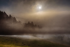 Atmospherica magia (marco soraperra) Tags: nikon nikkor winter autumn snow grass sky clouds atmosphere light sun shadow white warm cold magical mist misty fog foggy december tree trees wood forest hill mountains silhouette nature
