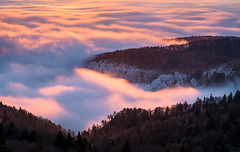 burning fog (mainone) Tags: floatingfog burningfog belchenflue landscape winter nature switzerland christiangehrig suisse schweiz burning morning longexposure sunrise fog landschaft mountains outdoor mountain