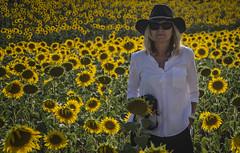 Aunt Pitu (pelpis) Tags: sunset sunflower sunflowerlandscape people family portrait yellow flowers lovessunflowers