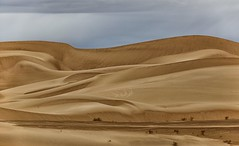 the only constant is change... (Alvin Harp) Tags: imperialsanddunes southerncalifornia i8 december 2016 sanddunes dunes natureabstract naturesbeauty nature sonyilce7rm2 fe24240mm teamsony alvinharp