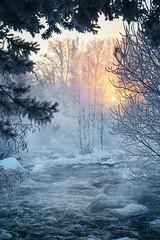 Crispy winter day (L.Matero) Tags: canon 6d tamron 2470 f28 suomi finland kuusa kuusaankoski laukaa winter wonderland rapid rapids trees frost snow sunset sunlight sun rocks cold landscape dreamy